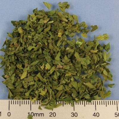 BIO-Petersilie Blatt, 4 mm