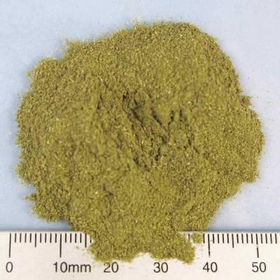 BIO-Weizengraspulver vital